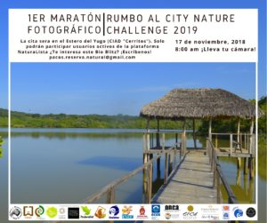 La Dirección de Ecología y Medio Ambiente del H. Ayuntamiento de Mazatlán te invita al maratón fotográfico que organiza Reserva Paco's. Participa, no faltes 🌎📸 https://sinaloa.gob.mx/noticias/mazatlan-sera-sede-del-city-nature-challenge-2019